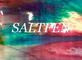 Saltfen: BFG